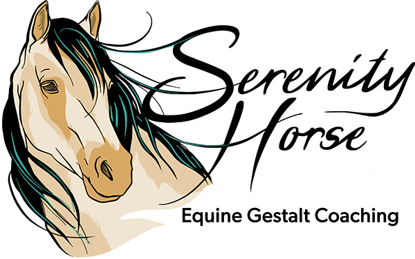 Serenity Horse Coaching